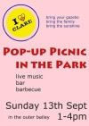 Pop up picnic in Clare Sunday 13th September